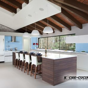 Modern-Custom-Kitchen